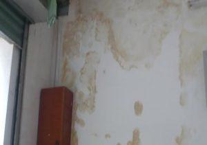 Tường bị thấm